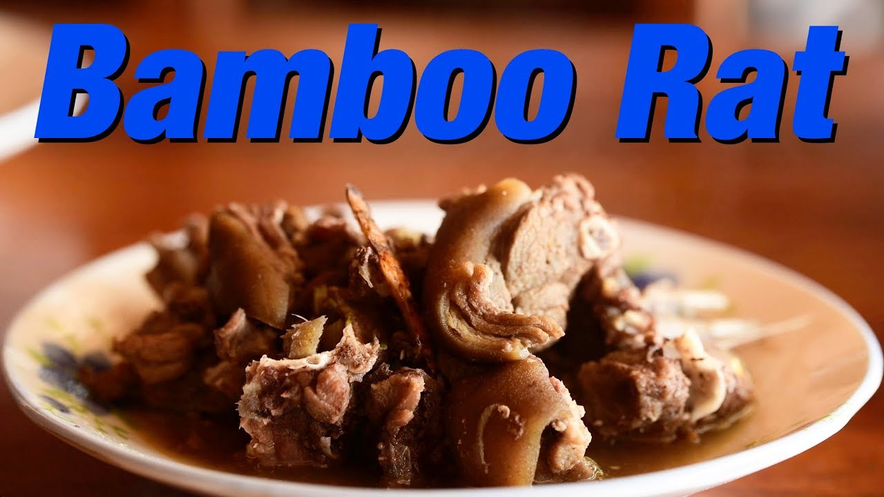 Eating Bamboo RAT, Wild Boar and Giant FROG - Laos Street Food ...