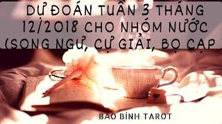 Nhóm Nước (Song Ngư, Cự Giải, Bọ Cạp): DỰ ĐOÁN TUẦN 3 THÁNG 12