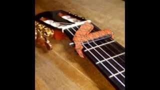 Hoorspel Simons gitaar 1