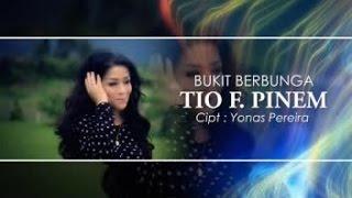TIO FANTA - BUKIT BERBUNGA (Official Music Video)