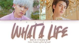Download What a life - EXO-SC (세훈&찬열) [HAN/ROM/ENG COLOR CODED LYRICS] Mp3