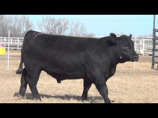 Express Ranches Lot 417