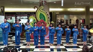 Vietnamese Martial Arts - Asian Cultural Festival 2018