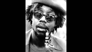 Peter Tosh - Downpresser Man