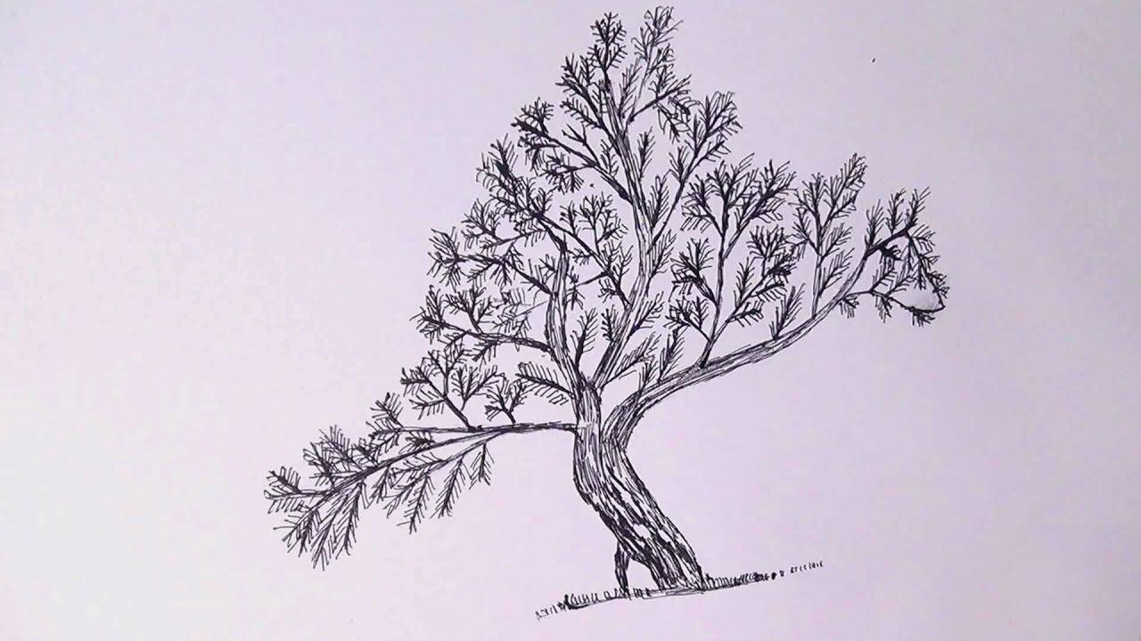 полезный картинки гелевой ручкой деревья виды свёклы, которые