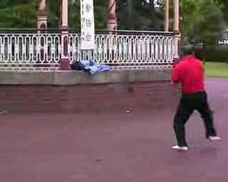 Download Xing Yi Demo by Master Tary Yip,