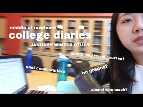 january winter study vlog | williams college | soapshin