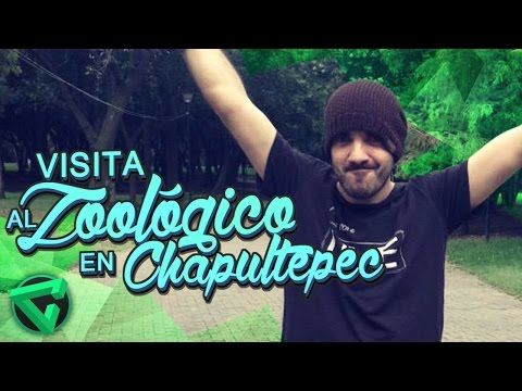 VISITA AL ZOOLÓGICO EN CHAPULTEPEC - Vlog México | iTownGamePlay