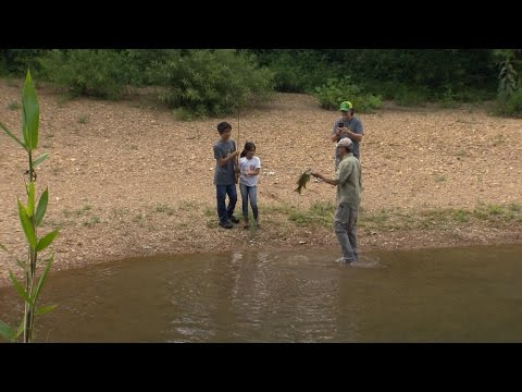 Wild SideTV-Far East on the South Harpeth