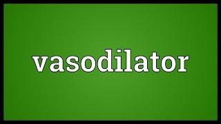 Vasodilator Meaning