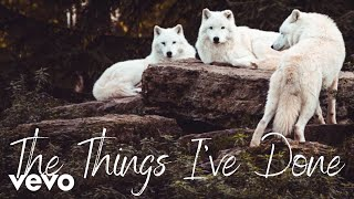 Montana Jacobowitz - The Things I've Done (Official Lyric Video)