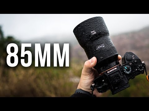 85mm - Why I HIGHLY Recommend It! | More Than Just Portraits!