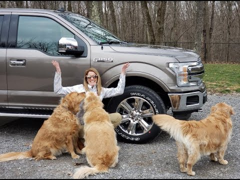#381 NEW 2019 F150 Lariat, REAL TRUCK or GROCERY GETTER?