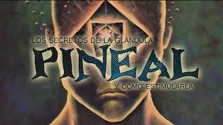 Los secretos de la glándula pineal y cómo estimularla