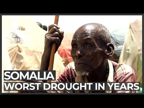 Driven Out By Drought: Farmland Turns Barren In Somalia