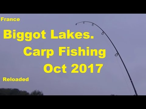 Carp Fishing France Biggot Lakes