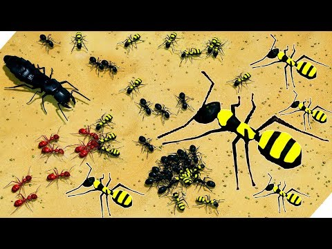 БЕШЕНАЯ АТАКА на муравейник - Развиваем Формикарий - Empires of the Undergrowth # 3