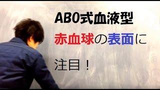 高校生物 ABO式血液型