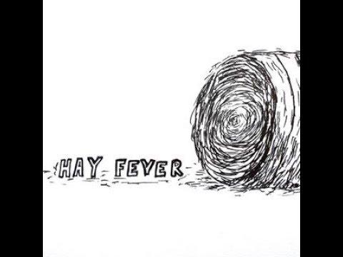 Hay Fever at the Gardner Winter Music Festival