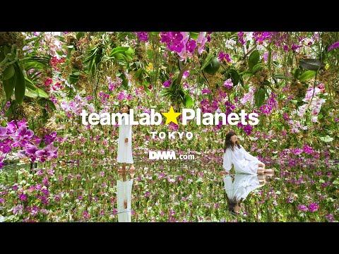 teamLab Planets TOKYO / チームラボプラネッツ TOKYO DMM.com