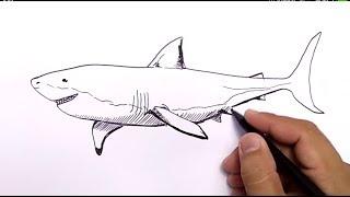 WOW,GILA, cara menggambar ikan HIU dengan MUDAH / how to draw shark