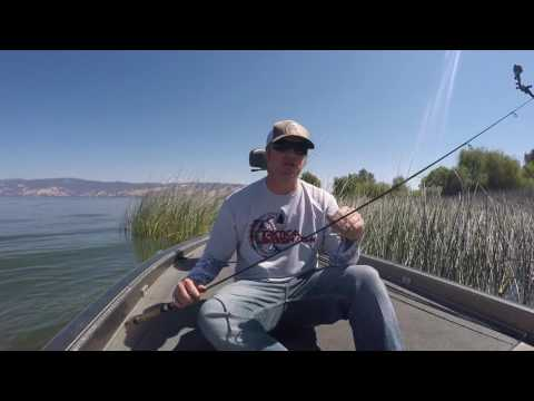 Should You Buy A 2 Piece Fishing Rod?