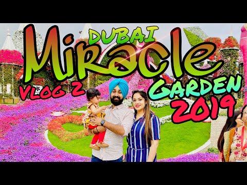 Dubai Miracle Garden, An Actual Miracle in the Desert | Dubai Vlog 2 | That Couple Though | 2019
