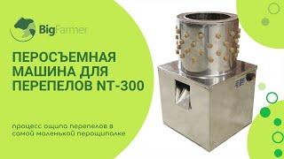 Перосъемная машина для перепелов, NT-300