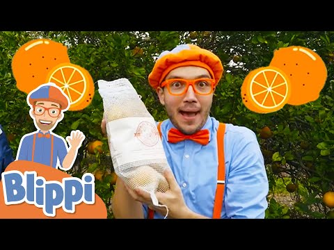 Blippi Visits an Orange Farm - Learning Fruits & Healthy Eating   Educational Videos For Kids