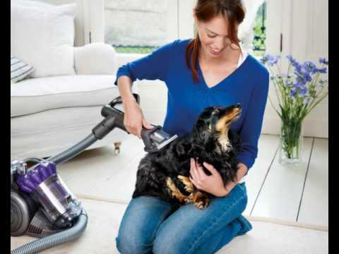 10 Pet-Friendly Products for Your Home