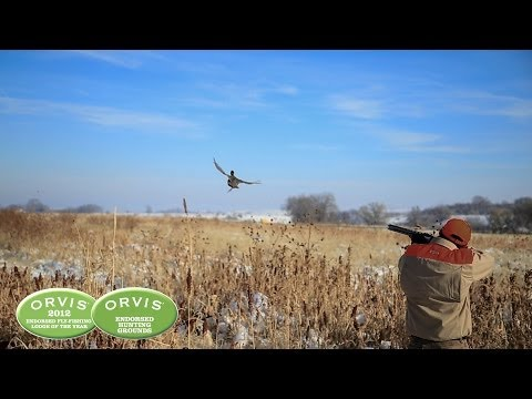 Utah Wingshooting At Orvis Endorsed Falcon's Ledge Lodge And Pleasant Valley Hunting Preserve