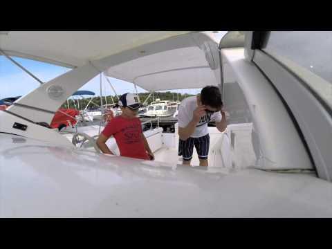 Činčila na brodu