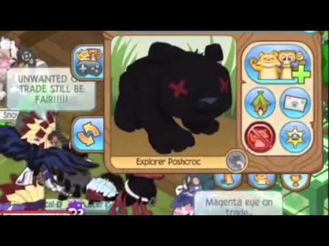 free online animal jam inappropriate jammer report and block full