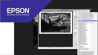 Tutorial: Using the Advanced Black and White Driver | Epson