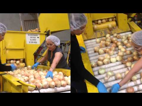 Fresh Produce Own Private Label Re-Pack Cross Dock Solutions USA Worldwide California