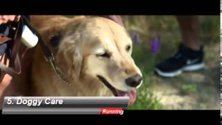 6 Dog Running Tips | What Dog Owners Should Know