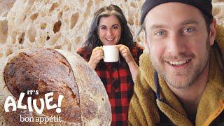 Download Brad and Claire Make Sourdough Bread   It's Alive   Bon Appétit Mp3 and Videos
