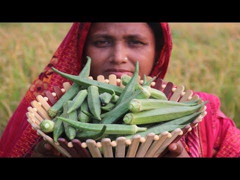 Farm Fresh Yummy Okra Recipe Healthy Spicy Cooking Fish With Fresh Lady's Finger Curry Village Food
