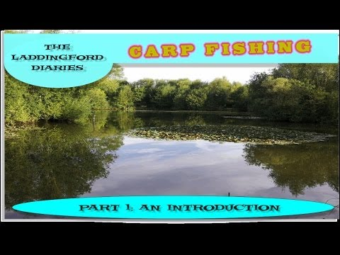 Carp Fishing: Laddingford Diaries Part 1: An Introduction And A Weekend Carp Fishing