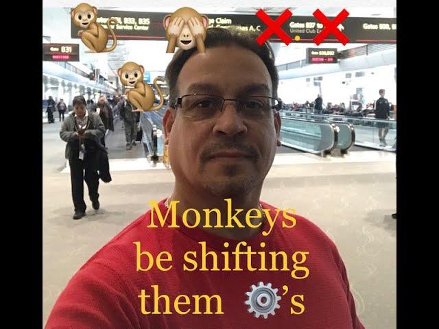 Temptation to Gamble Evenings? RID that Monkey shifting Gears LOL