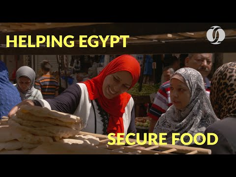 EBRD and EU improve Egypt's wheat supply