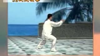 32式太極拳 - 陳思坦 Master Chen Sitan 32 Tai Chi Quan