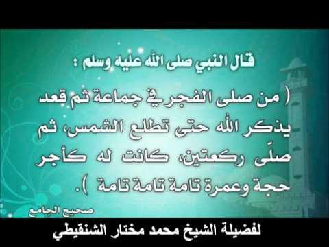 هل صلاة الإشراق هي صلاة الضحى للشيخ محمد مختار الشنقيطي Youtube
