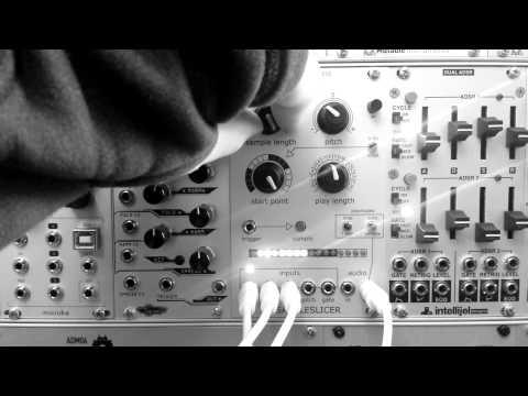 Modular Breakcore - Ginko Synthese Sampleslicer