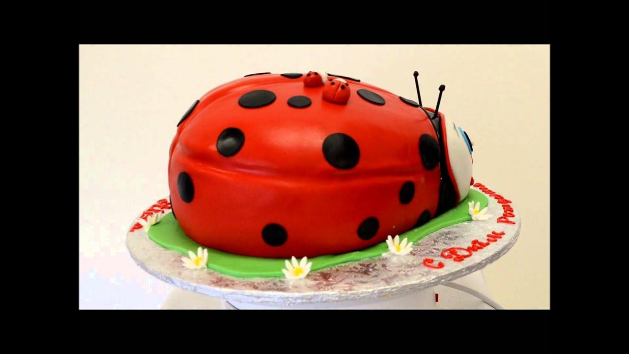 Lady Bug Cake Presentation Custom Cake Ladybug Birthday Cake