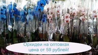 видео Новогодние подарки 2017 от производителя оптом и в розницу, заказать в интернет магазине