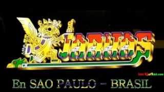 LOS  KJARKAS  EN SAO PAULO - BRASIL