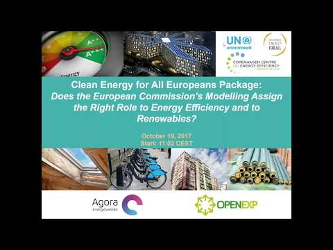 Does the Commission Modelling Assign the Right Role to Energy Efficiency and Renewables?