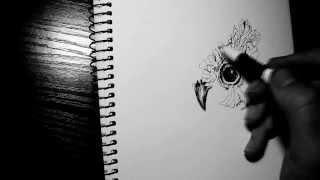 Owl / Рисунок совы