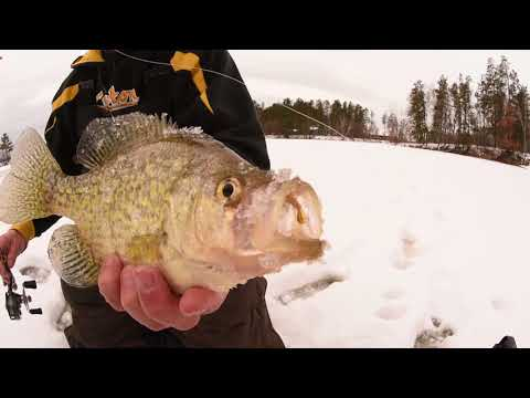 Go Finesse To Catch BIG, Pressured Panfish In Community Hole Areas W/ Tungsten Jigs